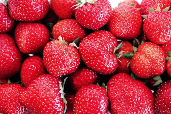 fraises-du-perigord